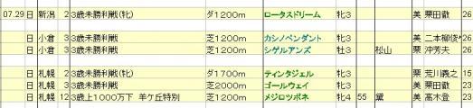 2012072829想定