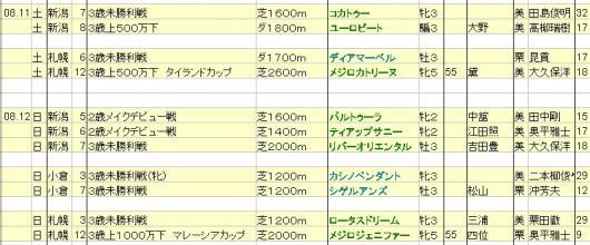 2012081112想定