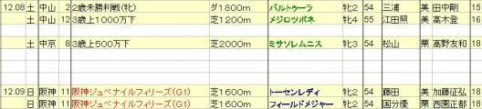 2012120809JRA発表