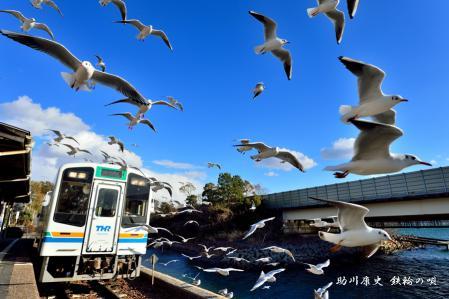 天竜浜名湖鉄道 S(01)