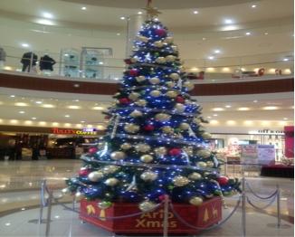 クリスマスツリーブログ