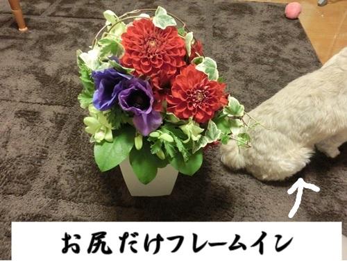002-20130331-105030.jpg