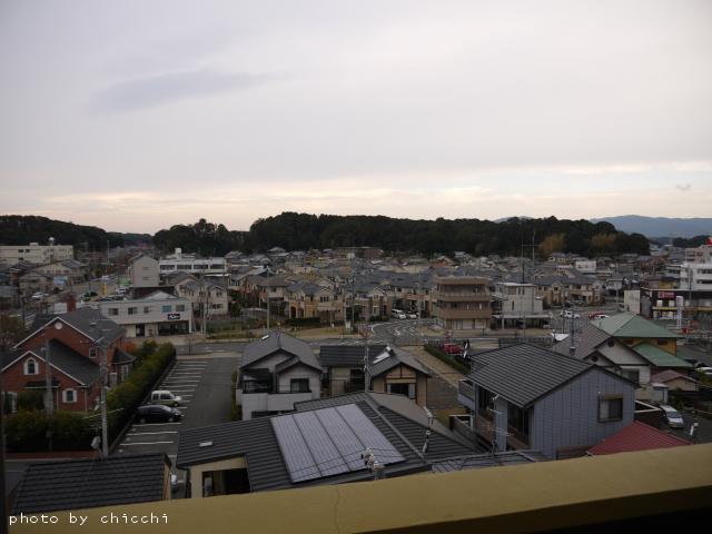 nanvanhamanako-13.jpg