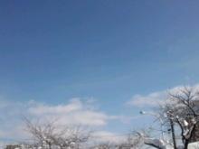 あんなこと☆こんなこと~にこりんぼの独り言-CA3F0177.jpg
