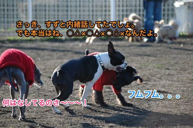 DSC_0060_1.jpg