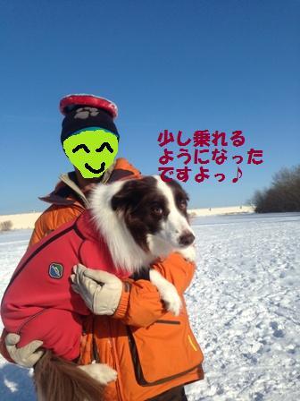 1___20121230200321.jpg