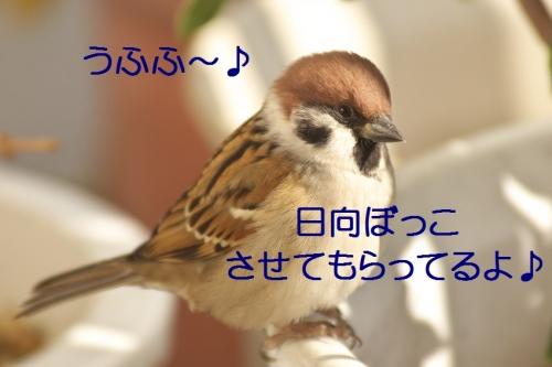 010_20141127221914901.jpg