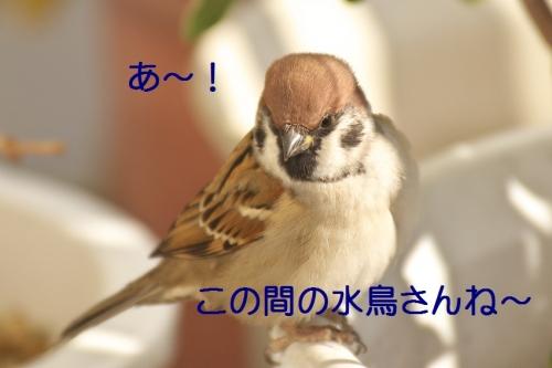020_201411272219141ad.jpg