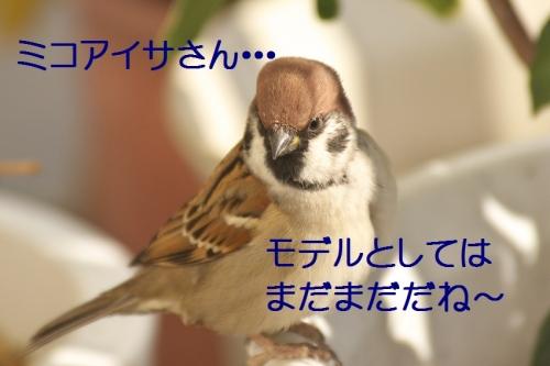 080_20141127222812ba0.jpg