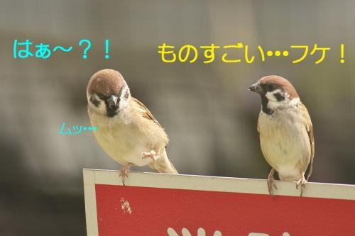 100_20141031211014682.jpg
