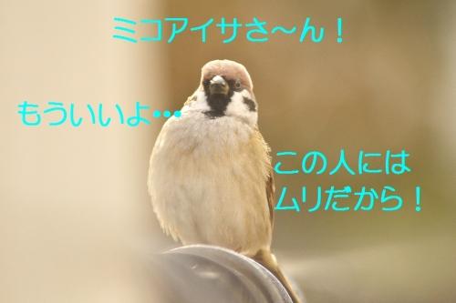 110_2014112313183177a.jpg