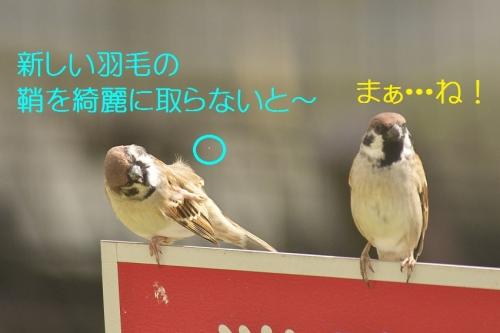 120_20141031211052133.jpg
