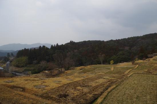 久留女木の棚田 2