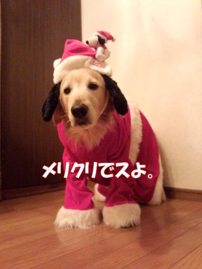 2_20121227002247.jpg