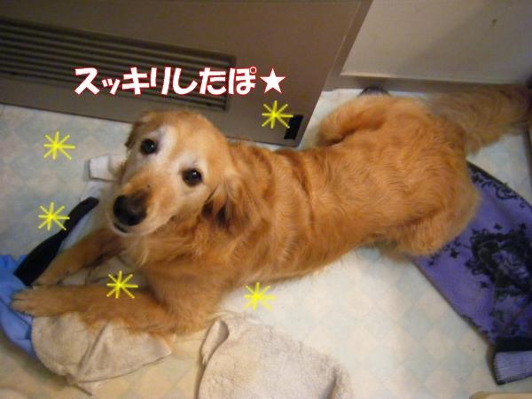 DSCF0025_20120616005120.jpg