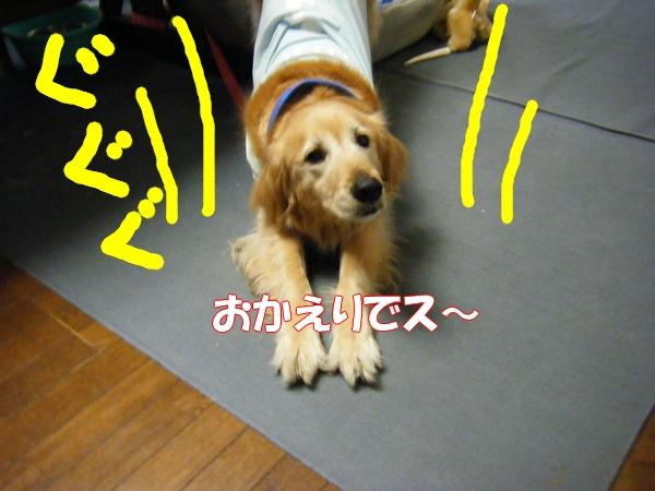 DSCF1005_20120528005312.jpg