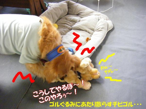 DSCF1012_20120528005309.jpg