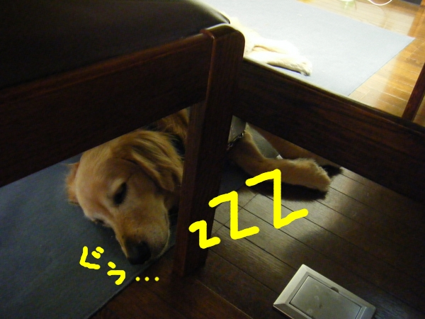 DSCF1025_20120528005346.jpg