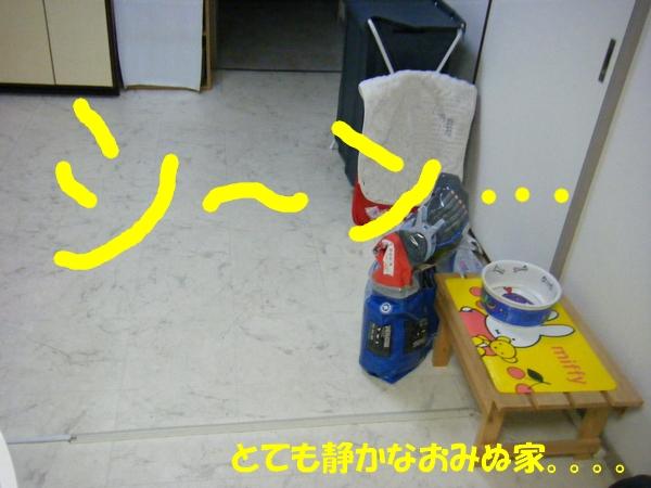 DSCF1042_20120604235558.jpg