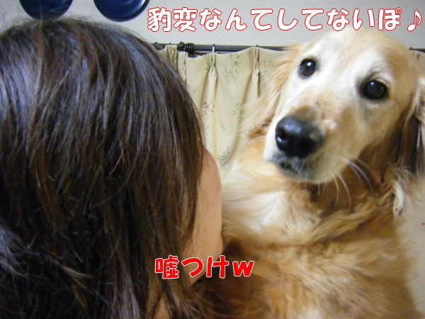 DSCF1055_20120609020807.jpg