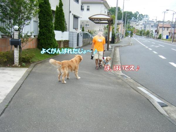 DSCF4015_20120622002423.jpg