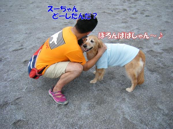 DSCF4069_20120626005538.jpg