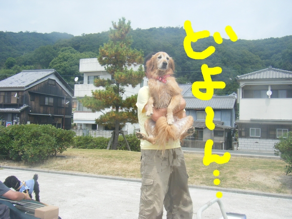 DSCF6319.jpg