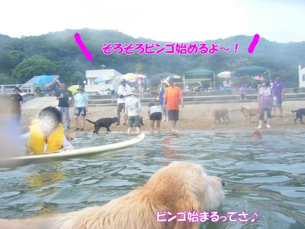 DSCF6396_20120819224225.jpg