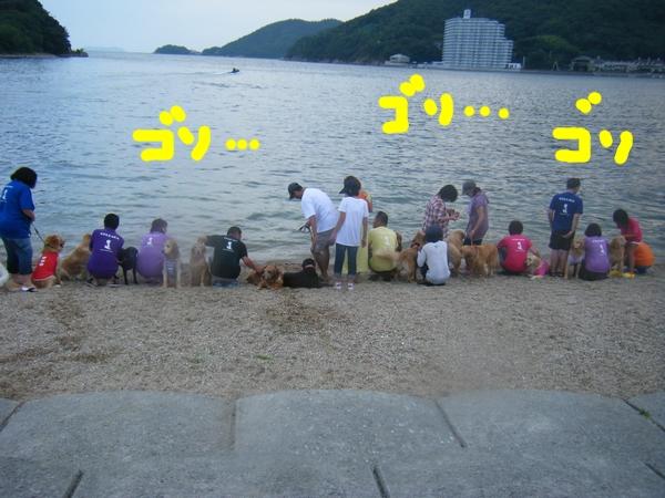 DSCF6415_20120822012236.jpg