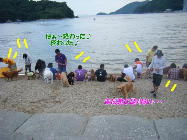DSCF6429_20120822012235.jpg
