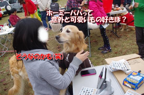 IMGP4933_20121210010528.jpg