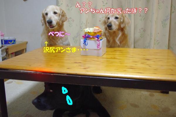 IMGP8710.jpg