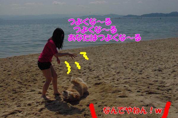 IMGP9163_20120516003122.jpg