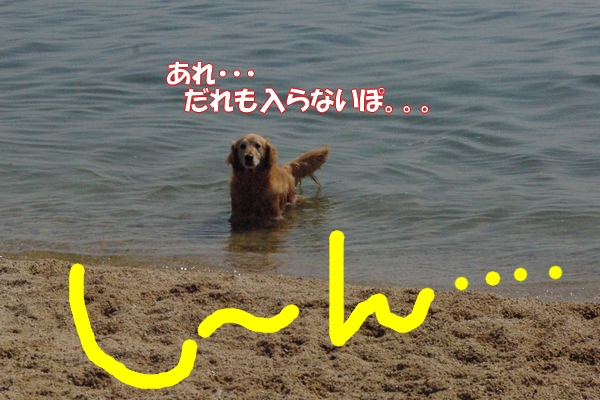 IMGP9166_20120512003311.jpg