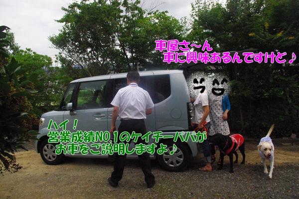 IMGP9192_20120717003625.jpg