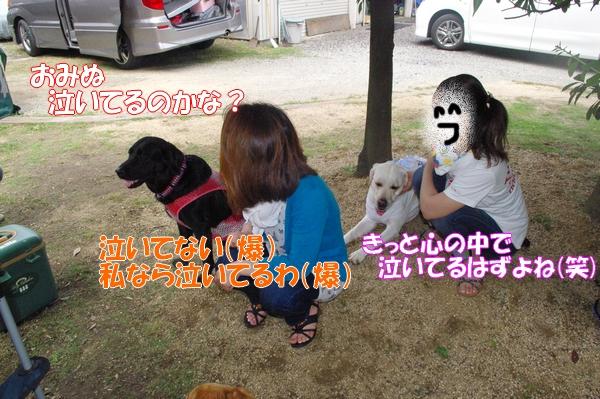 IMGP9262_20120718003547.jpg