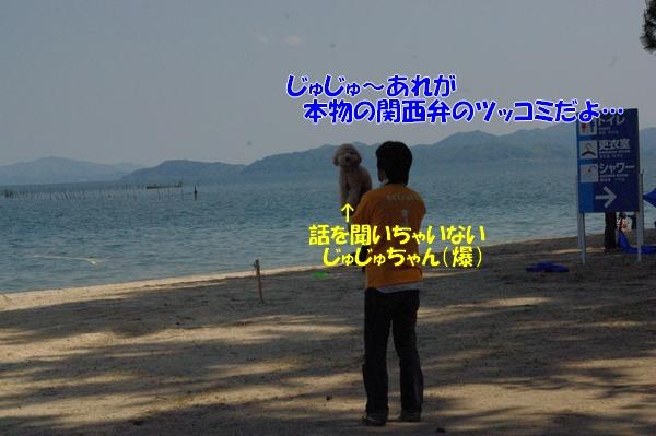 IMGP9485_20120512003348.jpg