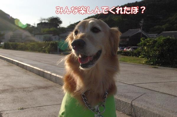 IMGP9848_20121008013335.jpg