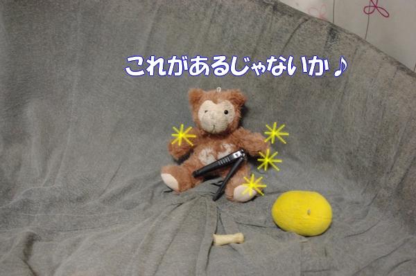 IMGP9920_20121019004458.jpg