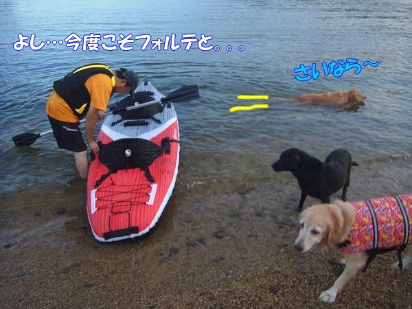 RIMG0095_20120920003626.jpg