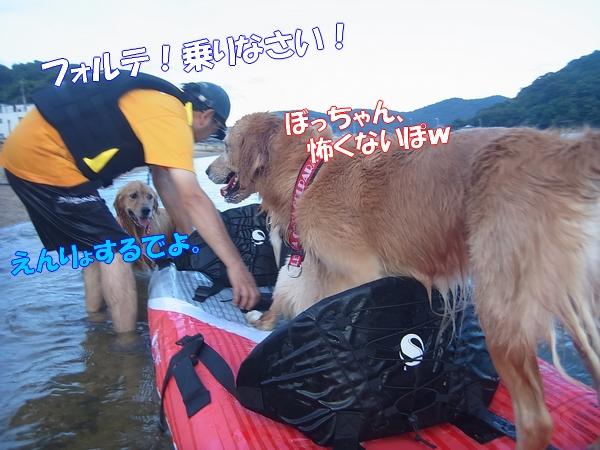 RIMG0110_20120920003656.jpg
