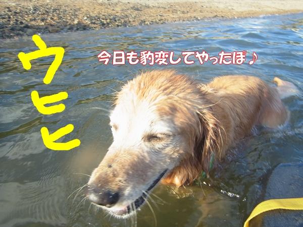 RIMG0322.jpg