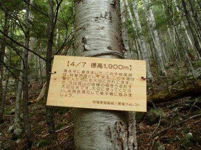 PA060041.jpg