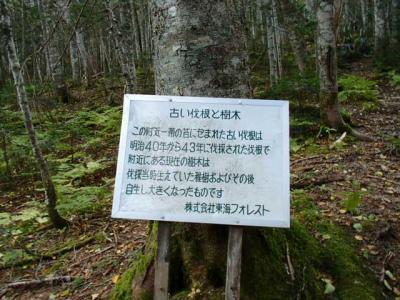 PA060059.jpg