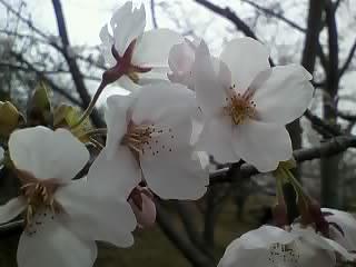 13-04-04_013.jpg