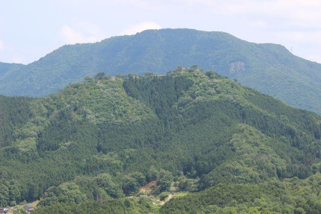 1502-1.jpg