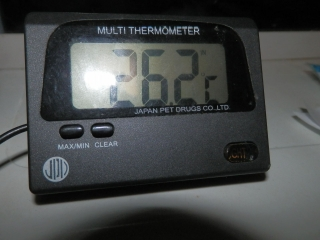 PC100008.jpg