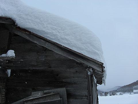 12 12/19 雪下ろし