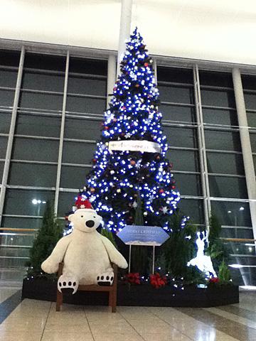 12 11/16 旭川空港