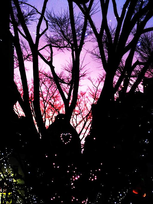 ゴーレムの影
